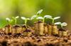 金诚财富:顺应资本市场规律 与投资者分享发展成果
