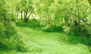 全国农业科技现代化将共建先行县