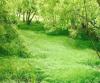 保障农村供水 推进农业现代化